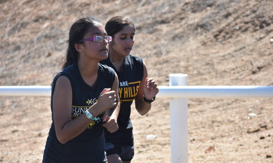 Juniors Isha Patel (front) and Sneha Amin jog up Lancer Way toward school during their cross country practice Aug. 15. Photo taken by Accolade photographer Paul Yasutake.