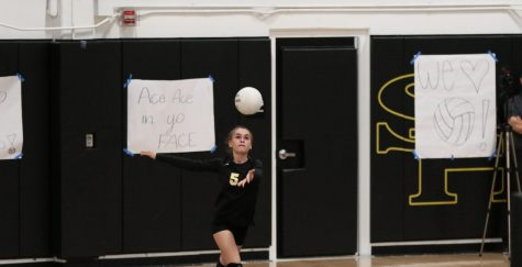 Defensive specialist senior Cambria Acheson serves against Fullerton Oct. 14 in her last home Freeway League game. Photo taken by Accolade photographer Paul Yasutake.