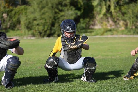 Baseball gear puts sport as most expensive to play