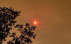 The sun glows red amidst the smog from the El Dorado wildfire on Sept. 9 in Fullerton.