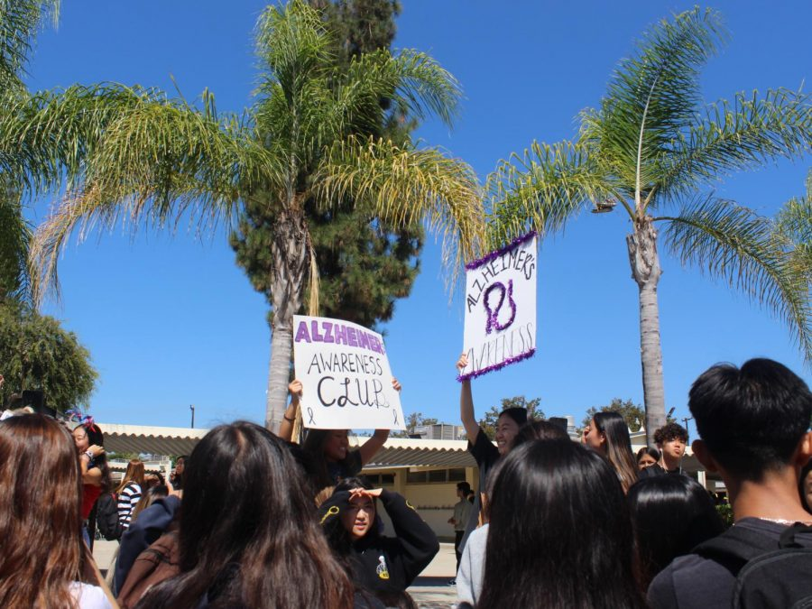 The Alzheimer's Awareness Club members promote their group during the 2019-2020 Club Rush at break. Because the new school year has started with distance learning instead of live instruction on campus, the ASB had to resort to a Google Slides presentation of clubs, which was posted on the school's website Sept. 4.