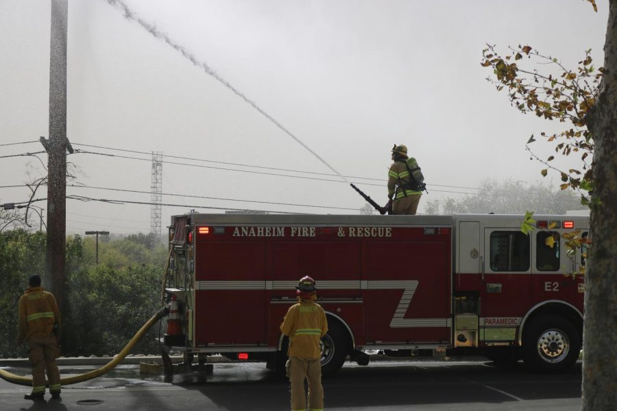 A firefighter standing upon Anaheim Fire Department's Engine No. 2 aims a deluge gun toward the palm tree on fire.