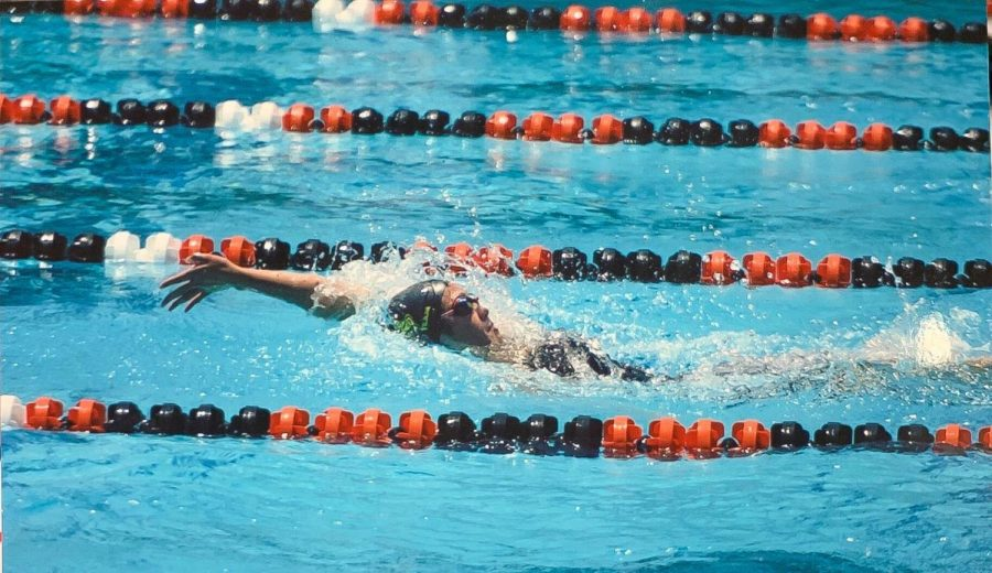 Senior Kaitlyn Yee swims the 100-yard backstroke during the 2019 Freeway League preliminaries at Troy High School, where she placed first. She then advanced to the 2019 CIF-SS Division 3 finals, where Yee also broke the Sunny Hills record for the 200-yard medley relay alongside her teammates and contributed to her team's second-place victory.